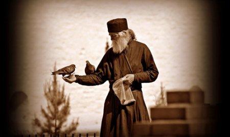 Азы духовной грамотности. Занятие 22. Как обуздать рассудок